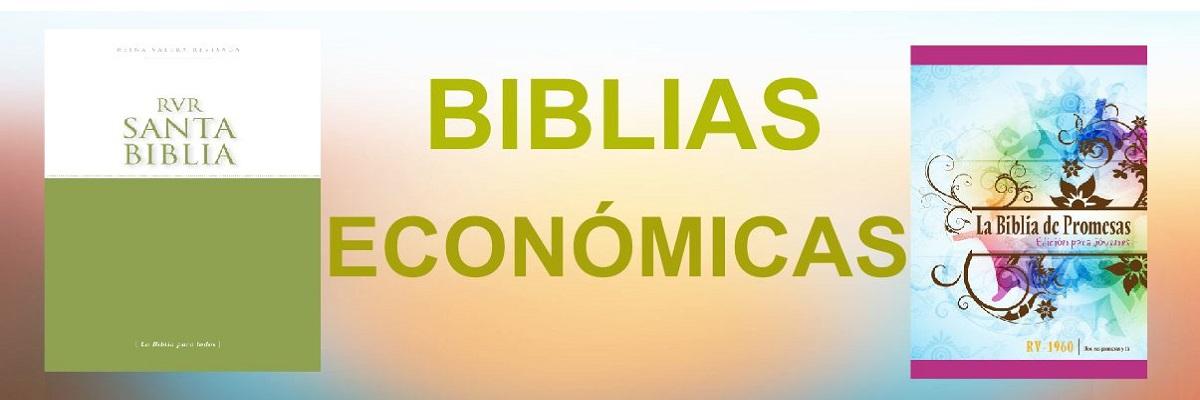 5. Biblias Económicas