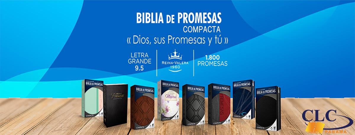 6. Biblia de Promesas Unilit - 1
