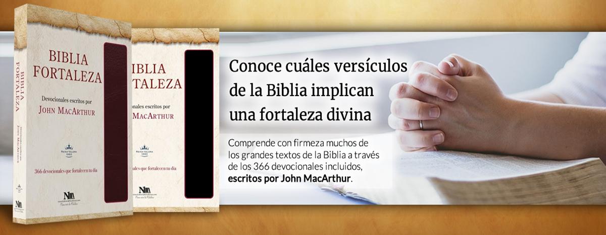 3. bibliafortaleza