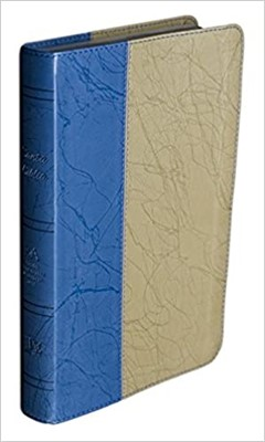RVA 2015 Biblia Reina Valera Actualizada - Dos Tonos (Piel Europea, Dos Tonos)
