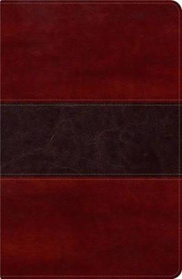 RVR 1960 Biblia del Pescador con Índice (Símil piel de lujo con índice, caoba)