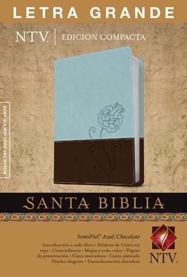 Biblia NTV Edición compacta,  Letra grande (Piel especial Dos tonos celeste marrón) [Biblia]