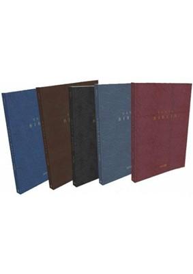 Biblia NVI (Vinil)
