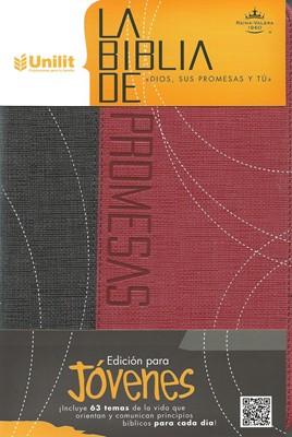 RVR 1960 Biblia de Promesas Edición para Jóvenes (Imitación Piel Dos Tonos Gris/Rojo)
