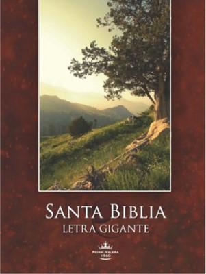 Biblia Reina-Valera 1960 Letra Súper Gigante con índice ( tapa rústica campo silvestre) [Biblia]