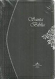 Biblia RVR60 con Índice (Imitación Piel Vinil Gris) [Biblia]