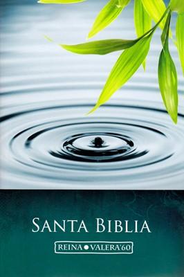Biblia de Letra Grande / Económica (Rústica)
