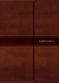 NVI Biblia Compacta Letra Grande con Cierre (Imitation Leather)