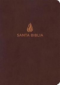 Biblia Letra Grande Tamaño Manual con Índice (Bonded Leather)