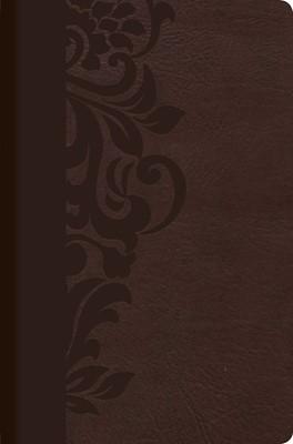 RVR 1960 Biblia de Estudio para Mujeres (Tapa simil piel café)