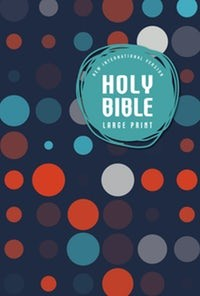 NIV Holy Bible Large Print Outreach Bible Kids (Rústico)