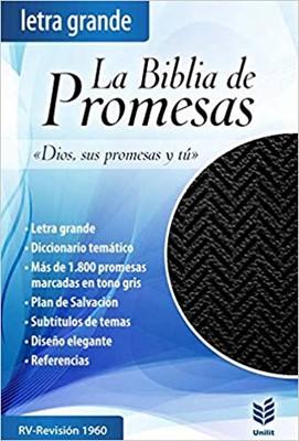 RVR 1960 Biblia de Promesas Letra Grande con Zipper (Edición piel especial, Negra)