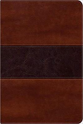 RVR 1960 Biblia del Pescador Letra Grande (Símil piel, Caoba)