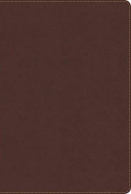 Biblia de Estudio Arco Iris (Simil Piel Chocolate)