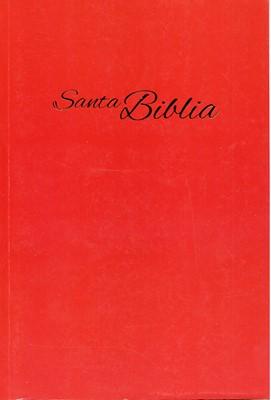 RVA 2015 Biblia Económica Letra Grande (Rústica)
