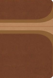 RVR 1960 Biblia de Estudio Aro Iris Canela Damasco (Imitación Piel Canela)