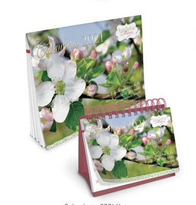 Calendario Espiral Para Escritorio Nuestro Pan Diario 2021 (Rústica Espiral )