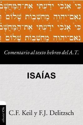 Comentario Del Texto Hebreo Del A.T
