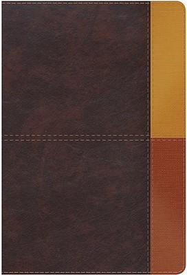 RVR 1960 Biblia de Estudio Arco Iris (Símil piel, terracota)