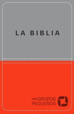NBV Biblia Para Grupos Pequeños (Lujo Naranja Gris)
