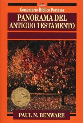 Panorama Del Antiguo Testamento (Rústica)