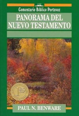 Panorama Del Nuevo Testamento (Rústica)