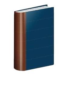 RVR 1960 Biblia Thompson Edición Especial Estudio (Piel Italiana Dos Tonos )
