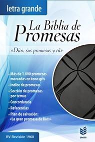 RVR 1960 Biblia de Promesas de Letra Grande (Piel especial, negro con detalles)