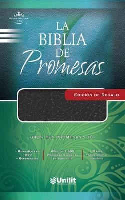 La Biblia de Promesas (Imitación Piel Negra)