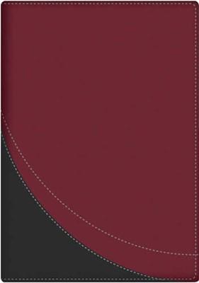 RVR 1960 Biblia en Orden Cronológico (Imitación Piel Duo tono)