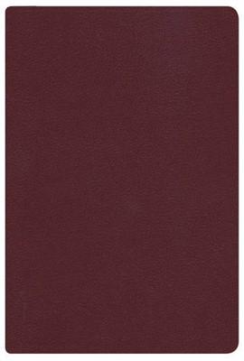 RVR 1960 Biblia Letra Grande Tamaño Manual (Imitación Piel Vino)