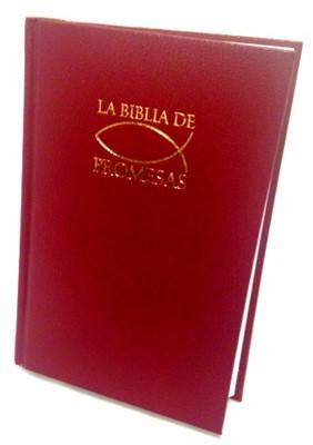 RVR 1960 Biblia de Promesas con Concordancia (Tapa Dura)