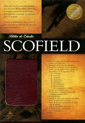 RVR60 Biblia Scofield De Estudio (Piel)