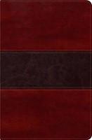 RVR 1960 Biblia del Pescador con Índice