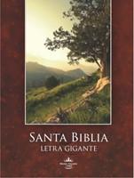 Biblia Reina-Valera 1960 Letra Súper Gigante con índice