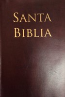 Biblia Reina Valera Letra Grande Tamaño Manual Con Referencias (Vinilo Cafe)