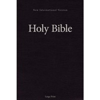 NIV Holy Bible Larger Print