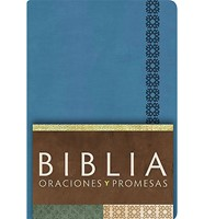 Biblia RV Contemporánea / Azul / Piel