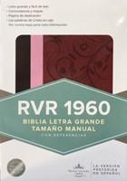 Biblia RVR 1960 Letra Grande Café/Rosa/Framb