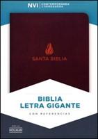 NVI Biblia Letra Grande