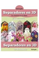 Separadores 3D Mujeres Bilingue