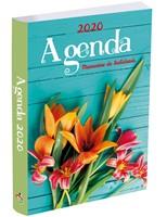 Agenda Prats 2020 - Turqueza