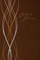 RVR 1960 Biblia de Promesa
