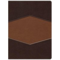RVR 1960 Biblia de Estudio Holman (Simil pie chocolate/terracota)