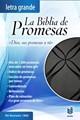 Biblia de Promesas Letra Grande/Negra (Piel especial, negro con detalles)